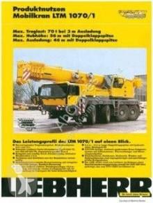 Grúa Liebherr LTM LTM 1070-1 grúa móvil usada