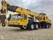 Grue mobile Grove TMS 300