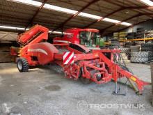 Scavapatate Grimme