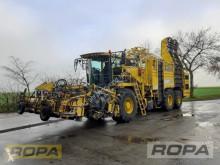 Culture spécialisée Ropa euro-Tiger V8-4a