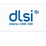 Groupe Dlsi Interim
