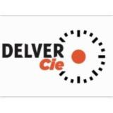 Delver Companie