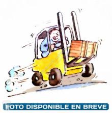 BT pedestrian pallet truck LWE 180 FRUTERA