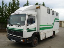 Used horse truck Mercedes 914