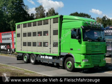 Camion van à chevaux occasion DAF XF 105/460 SC Menke 3 Stock Hubdach