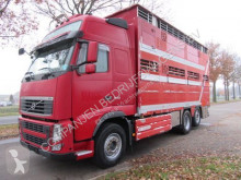 Volvo FH 540 truck used cattle