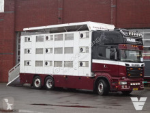 Scania R 520 truck used cattle