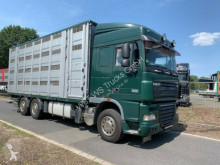 Camion furgonetă transport cai DAF XF105/410 Spacecup Menke 4 Stock