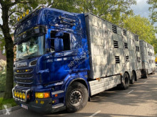 Scania R 620 trailer truck used cattle