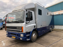 DAF cattle truck 65-210 HORSETRUCK WITH LIVING (5 HORSES)