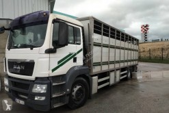 MAN TGS 18.360 truck used livestock trailer