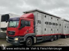 MAN livestock trailer truck TGX TGX 26.440 LX Menke 3 Stock Hubdach