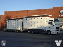 MAN cattle trailer truck TGX 26.480