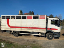 Camión remolque ganadero para ganado bovino MAN TGM 15.280
