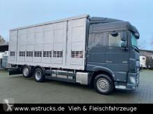 "DAF livestock trailer truck XF XF 480 ""Neu"" Menke 3 Stock Hubdach"