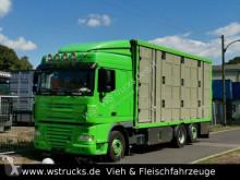 Camion van à chevaux DAF XF 105/460 SC Menke 3 Stock Hubdach