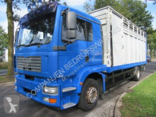 MAN cattle truck TGM