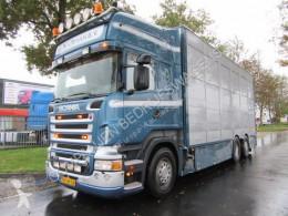 Camion bétaillère bovins Scania R 500