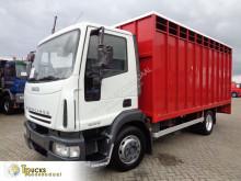 Camion van à chevaux Iveco Eurocargo
