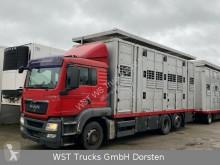 MAN lószállító utánfutó teherautó TGX 26.440 LX Menke 3 Stock Hubdach