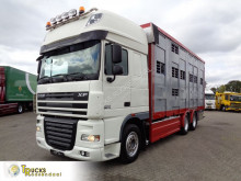 DAF cattle truck XF105