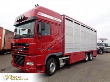 Camión remolque ganadero para ganado bovino DAF XF95