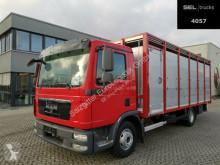 Kamion přívěs pro přepravu dobytka MAN TGL TGL 12.250 4x2 BL / 1 Stock