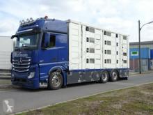 Camión remolque ganadero Mercedes Actros Actros 2551 Menke 4 Stock Vollalu Hubach