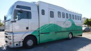 Camion van à chevaux Mercedes Actros 2542