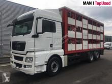 Lastbil hästtransport MAN TGX 26.480 6X2-2 BL CARROSSERIE GUITTON
