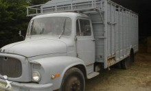 Camion Unic Non spécifié trasporto bestiame usato