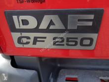 Voir les photos Camion DAF CF 75.250