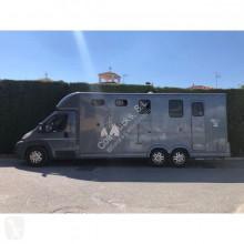 Furgoneta remolque para caballos Fiat Ducato