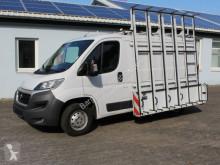 Veículo utilitário Utilitaire Fiat Ducato L1H1 HEGLA Glastransporter EURO 6