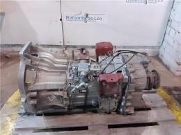 Caixa de velocidades Iveco Eurocargo Boîte de vitesses Caja Cambios Manual Chasis (Typ 130 E 18) [5 pour camion Chasis (Typ 130 E 18) [5,9 Ltr. - 130 kW Diesel]