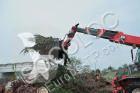 Vedeţi fotografiile Echipamente pentru construcţii U.Emme FOURCHE UEMME