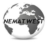 Company NEMATWEST
