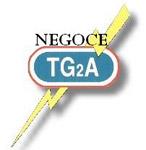 Société TG2A