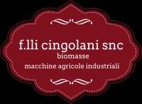 f.lli Cingolani di Roberto e Giancarlo snc
